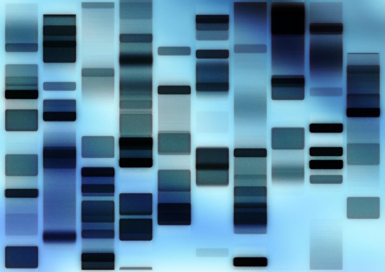 DNA – przełomowe odkrycie w biologii